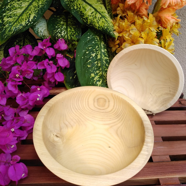 Set of 2 Hackberry Shallow Bowls